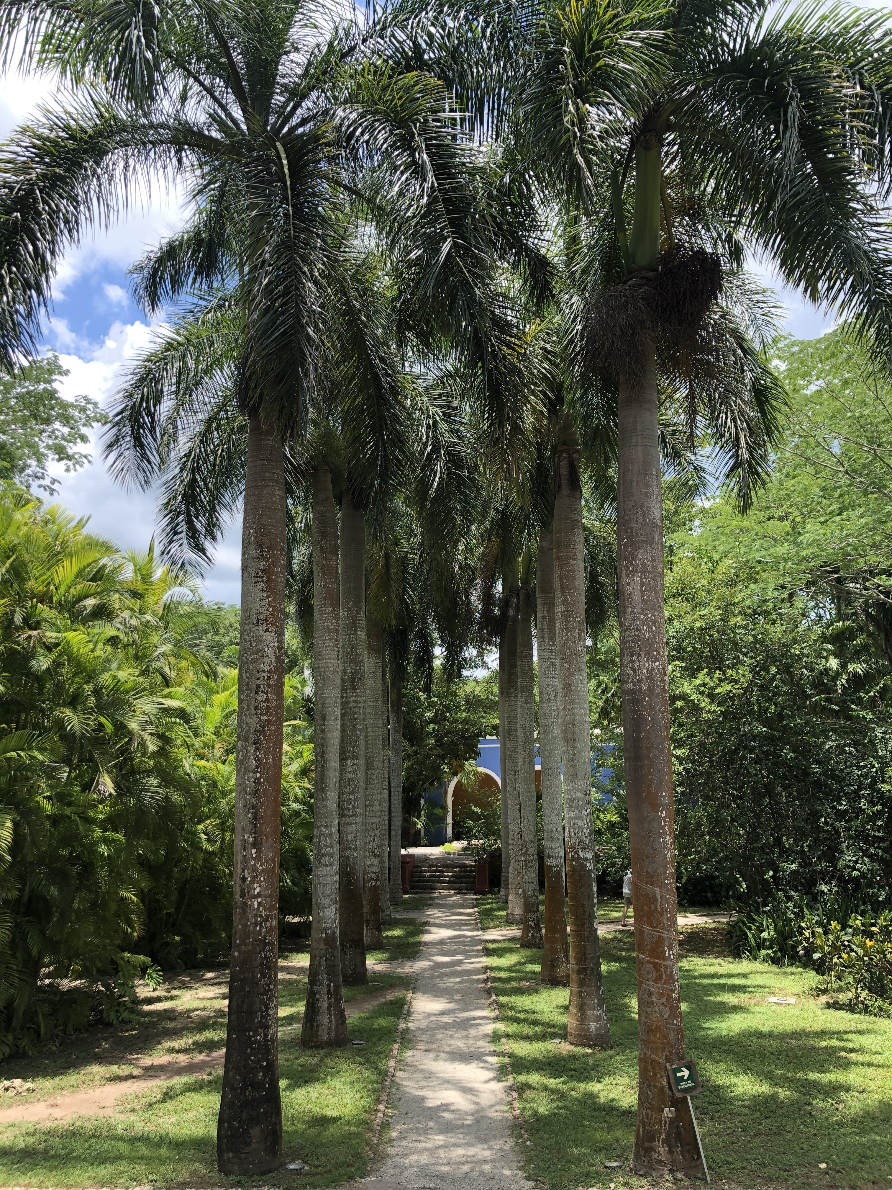Stephanie Hill from The Style Bungalow featuring Life As I Know It August Hacienda San Jose, Merida
